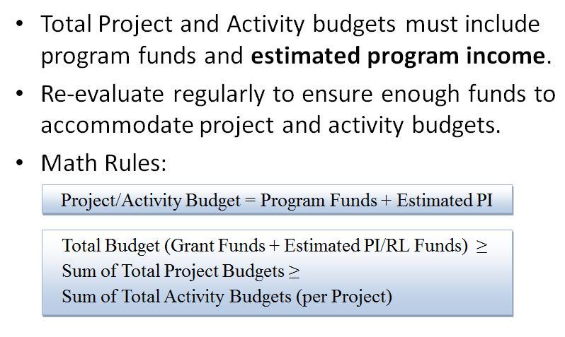 Program Income Summary